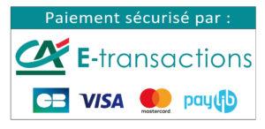 ca e transactions cb visa mastercard web